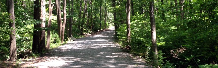 A Walk in the Woods, Jefferson Township